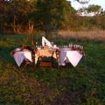 wildlife safari guests stop for drinks in the bush